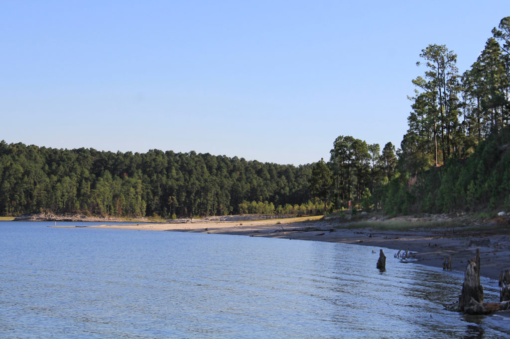 The 10 best fishing lakes in texas fished that for Fishing sam rayburn