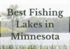 Best Fishing Lakes In Minnesota