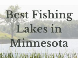 Best Fishing Lakes In Minnesota