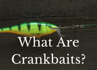 What Are Crankbaits